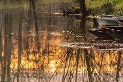 Marais Coulon 1 barques018