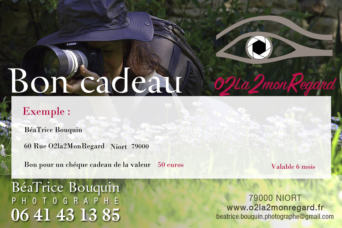 bon_cadeau2_1200